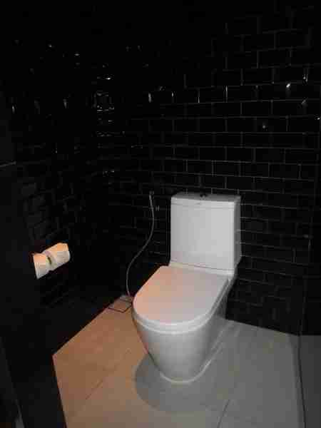The small toilet area