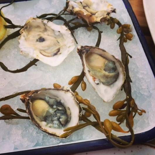 Oysters at Playa Provisions