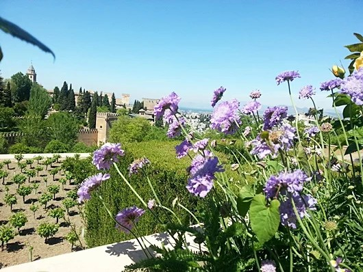 Don't miss the Generalife, the Alhambra gardens