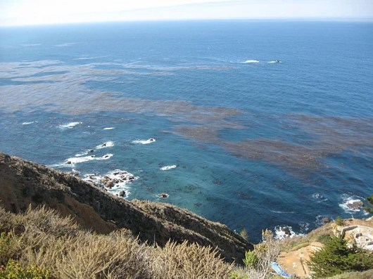 California's Pacific Coast Highway sometimes offers gorgeous views of the Pacific Ocean, like this one in Big Sur