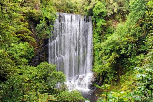 Korokoro Falls along the Waikarekoana Great Walk on New Zealand's North Island (Image courtesy f Shutterstock)