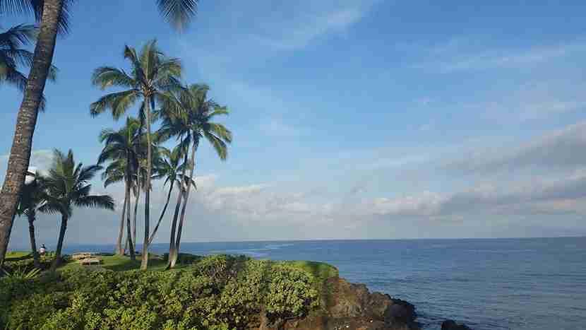 Serene scene from Maui
