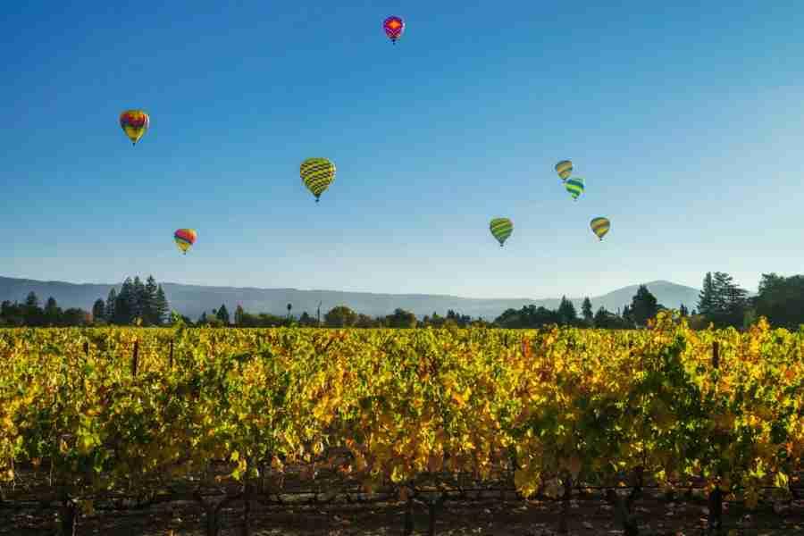 Napa hot air balloons, photo courtesy of Francesco Carucci via Shutterstock