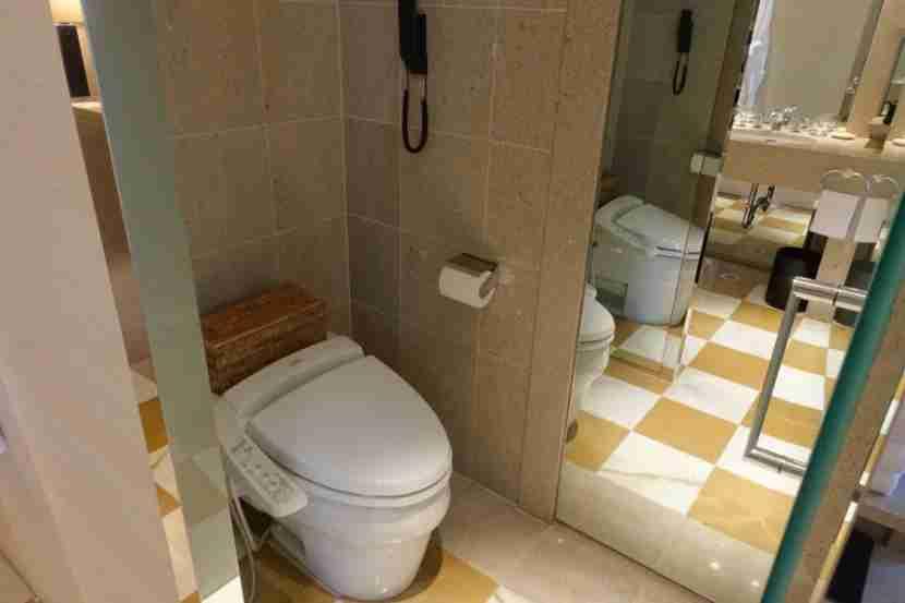 The Park Suite water closet.