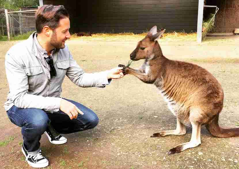 Head to the Healesville Wildlife Sanctuary to get up close and personal with Australia