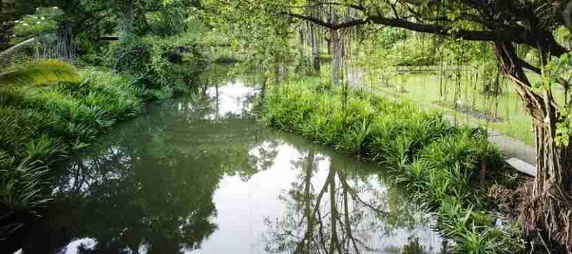 The Sampran Riverside Gardens
