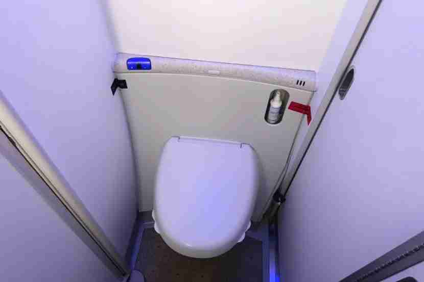 The lav has a motion-activated toilet, which is standard for the 787.