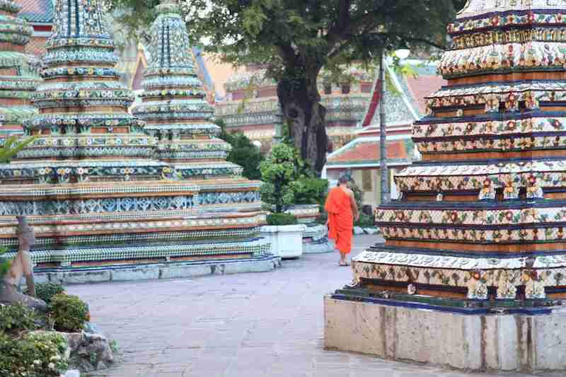 Buddhist monks stand out among the city