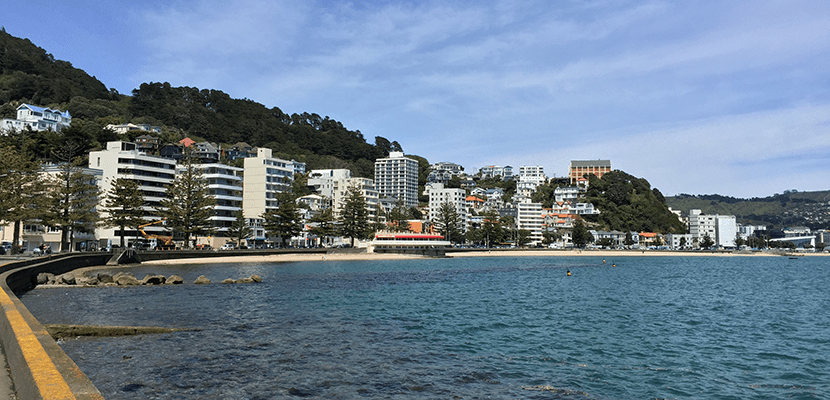 Sunny, sandy Oriental Bay is a gem. Image by the author.