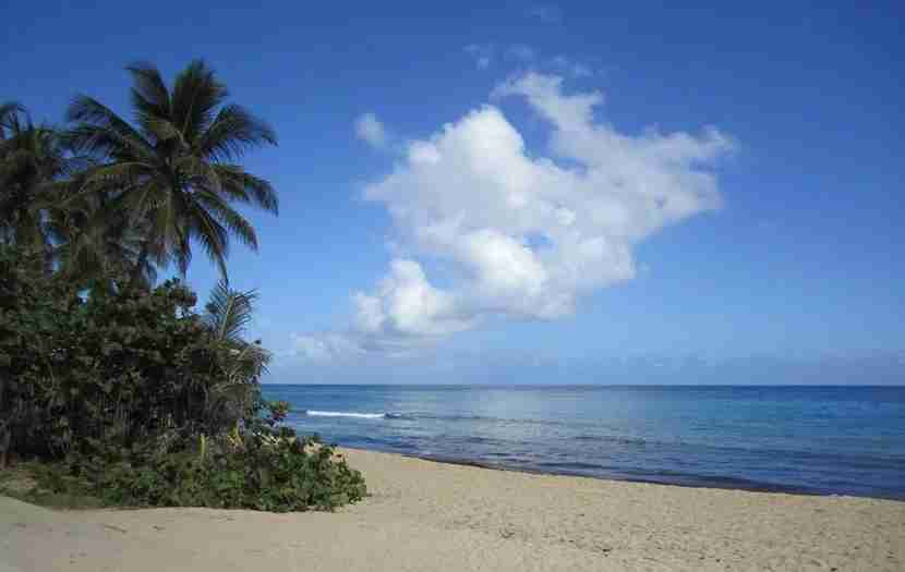 <em>The beach scene in Puerto Rico is nothing short of magical. Image courtesy of the author.</em>