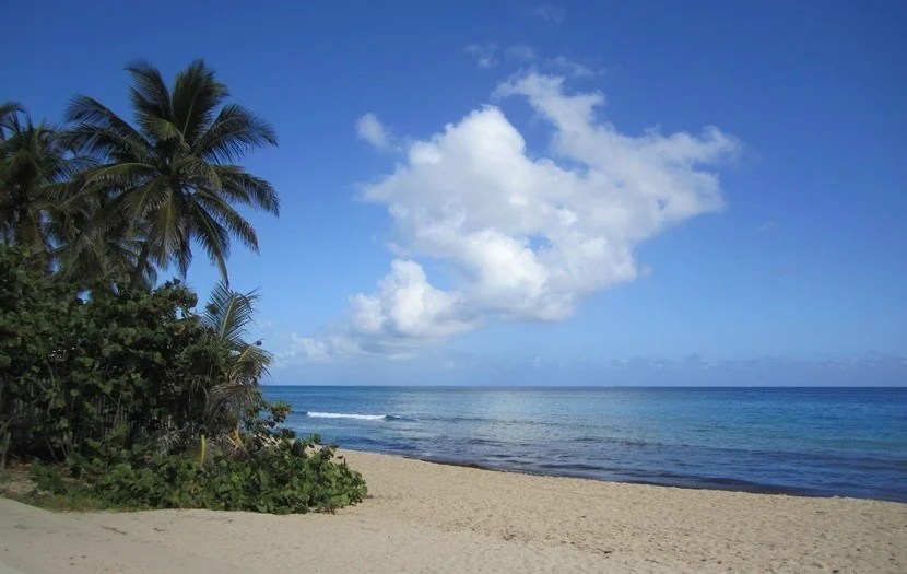 EmThe Beach Scene In Puerto Rico Is Nothing Short Of Magical Image
