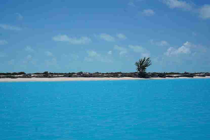 The blue, blue water in Turks & Caicos.