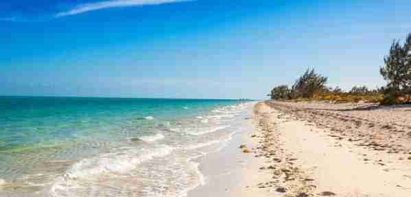 Beach in Providenciales, Turks and Caicos. Image courtesy of Shutterstock.