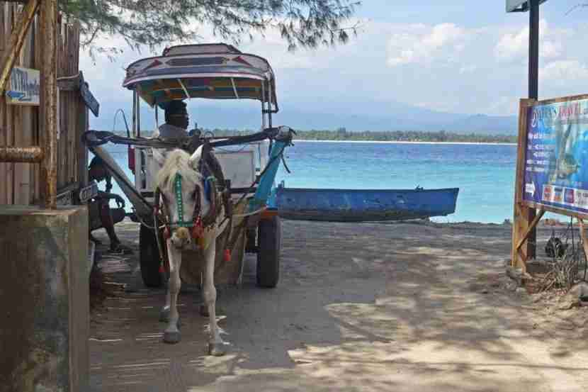 """No Cars Go"" could be the Gili Islands theme song. Image courtesy of the author."