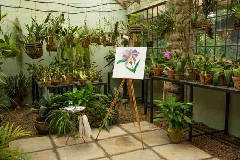 Paint a masterpiece in the orchid garden. Image courtesy of Giraffe Manor.