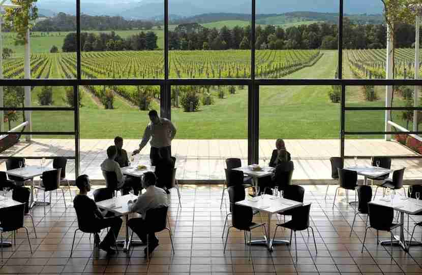 Set off on wine tours in the Yarra Valley, a quick day trip from Melbourne. Image courtesy of Yarra Valley and Dandenong Ranges