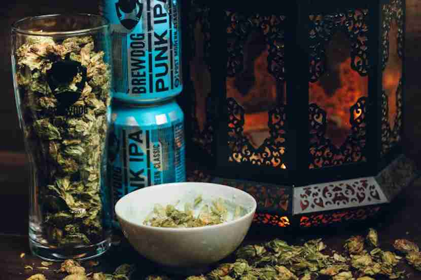 Spa treatments will be — you guessed it — beer-infused. Image courtesy of BrewDog via Indiegogo.