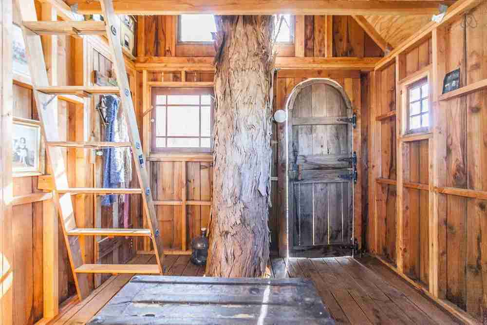 Live trees pass through the center of this rustic house. Photo courtesy of Glamping Hub.