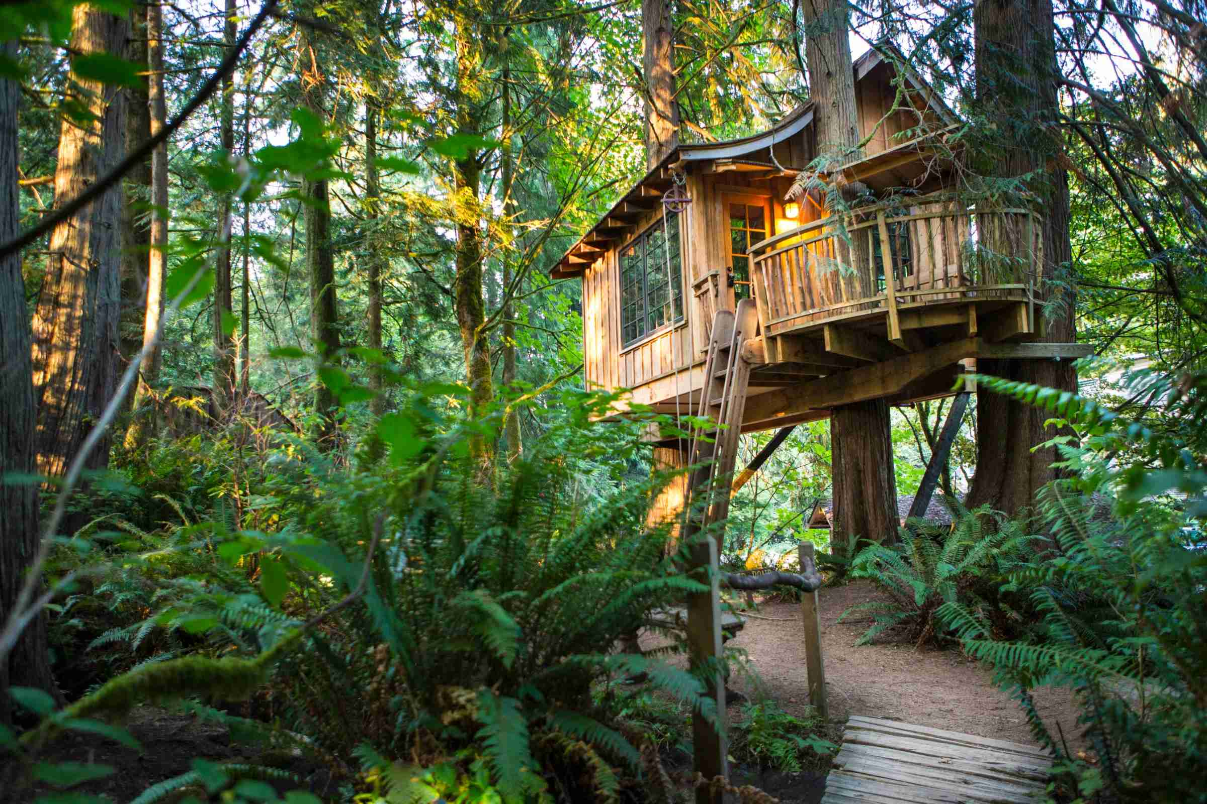 The tree house- Upper Pond is beautifully situated among the trees. Photo courtesy of Adam Crowley.