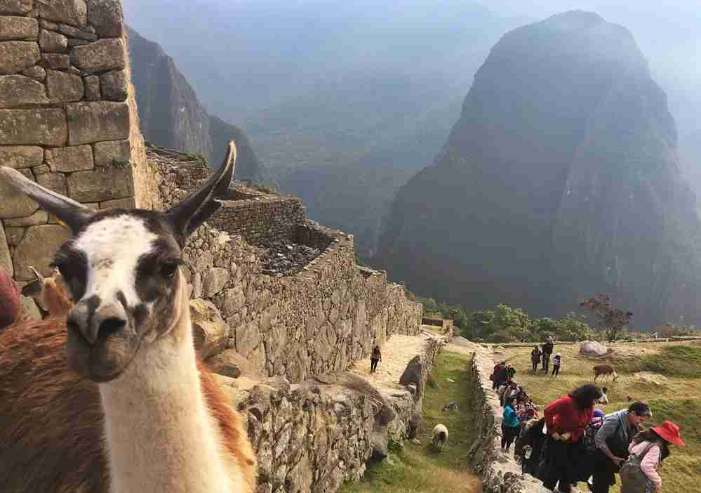 Machu Picchu is expensive, but worth it.