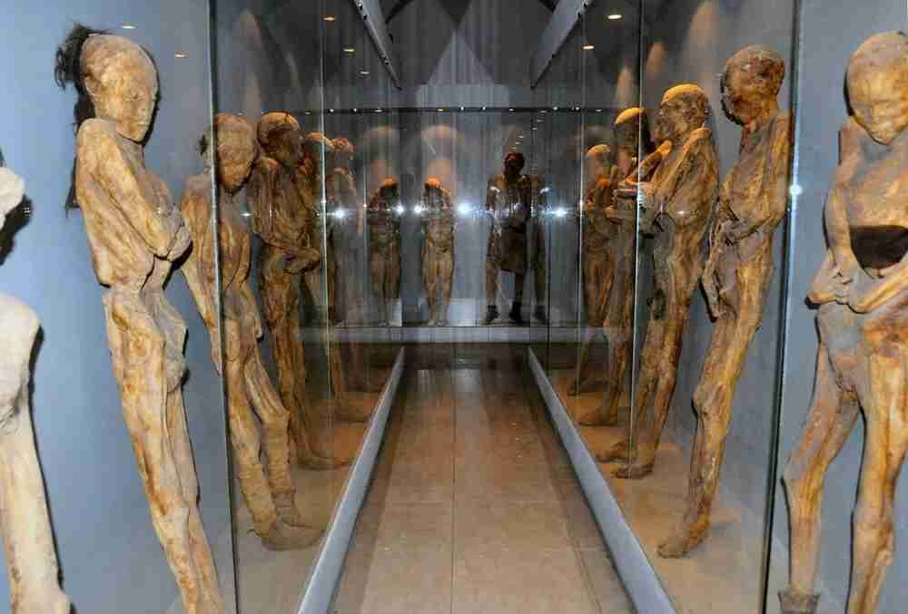 Walk through the hall of mummies at the Mummy Museum. Image by Russ Bowling / Flickr.