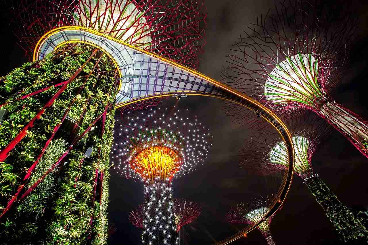 SINGAPORE - JULY 02: The Supertree Grove is illuminated during the Gardens by the Bay, Light and Sound show on July 2, 2012 in Singapore. The free nightly light and sound display which sees the massive man made Supertrees lit up with spotlights and neon lights officially opened tonight in the 54 hectare south section of the Gardens by the Bay. The Gardens by the Bay was opened on June 29 and features over 220,000 plants, the vertical gradens of the Supertrees, the Flower Dome, Cloud Forest and a Skywalk. (Photo by Chris McGrath/Getty Images)