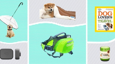 Best Gifts for Pet Owners cacae13d6