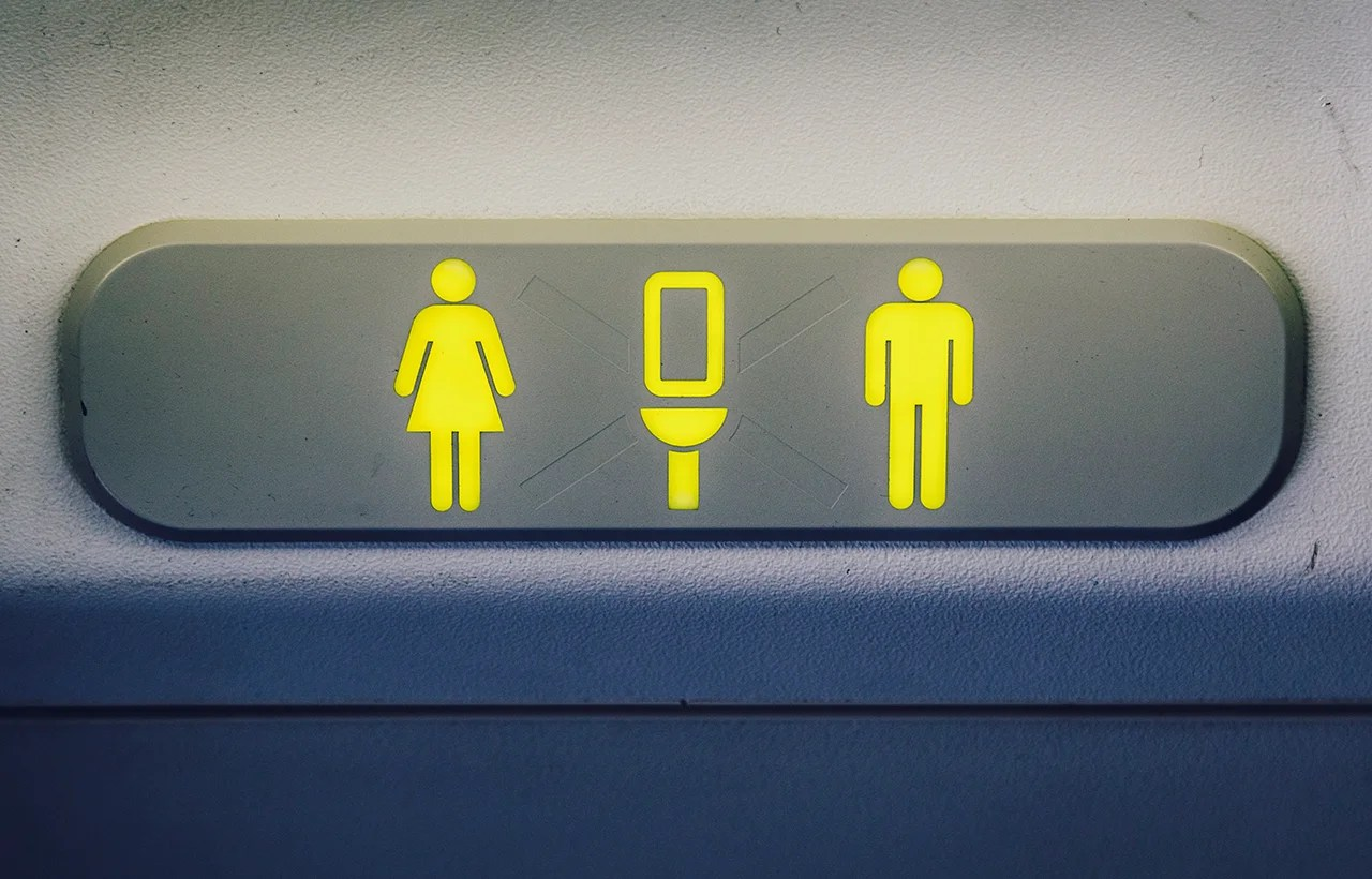 Everything You Never Wanted To Know About Airplane Toilets