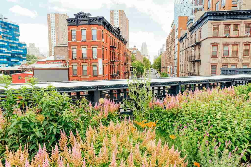 Exploring the High Line in the warmer months. Photo by Boogich via Getty Images.