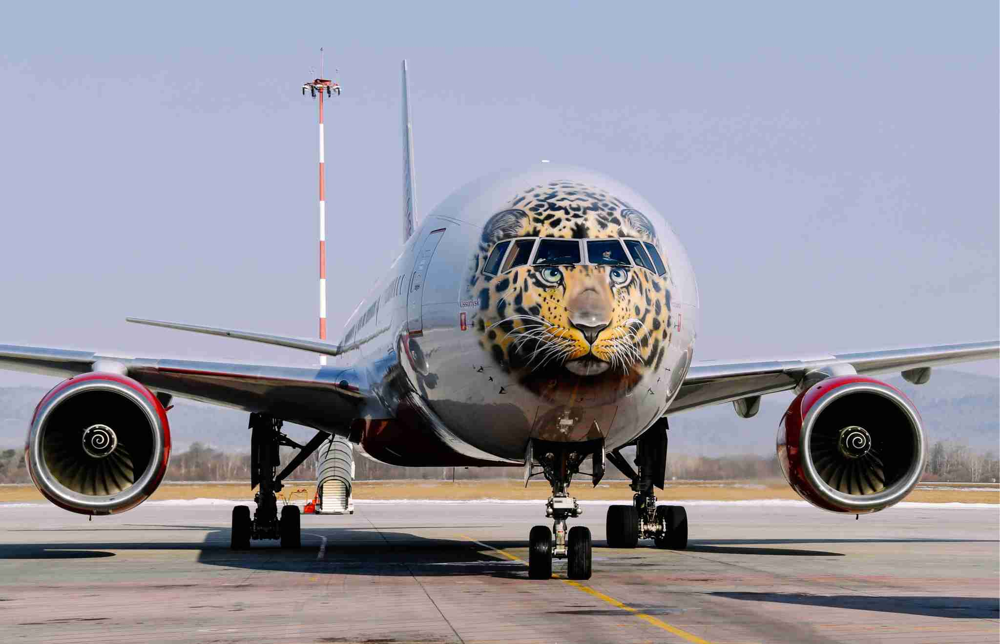 VLADIVOSTOK, RUSSIA - MARCH 3, 2017: Rossiya Airlines Boeing 777-300 with a face of the endangered Amur leopard painted on its nose cone arrives at Vladivostok International Airport. Yuri Smityuk/TASS (Photo by Yuri SmityukTASS via Getty Images)