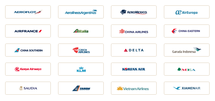 The 20 current SkyTeam airlines. Soon to become 19, as China Southern leaves.