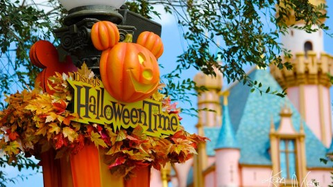 tips and tricks for mickeys not so scary halloween party