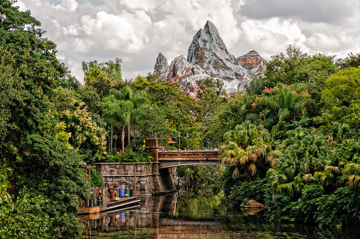 Expedition Everest in Walt Disney World. Photo by Mike Christoferson/Flickr
