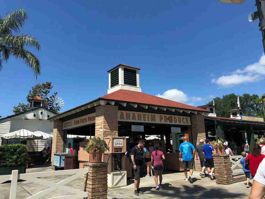 Anaheim Produce at Disney World (photo by Edward Pizzarello)