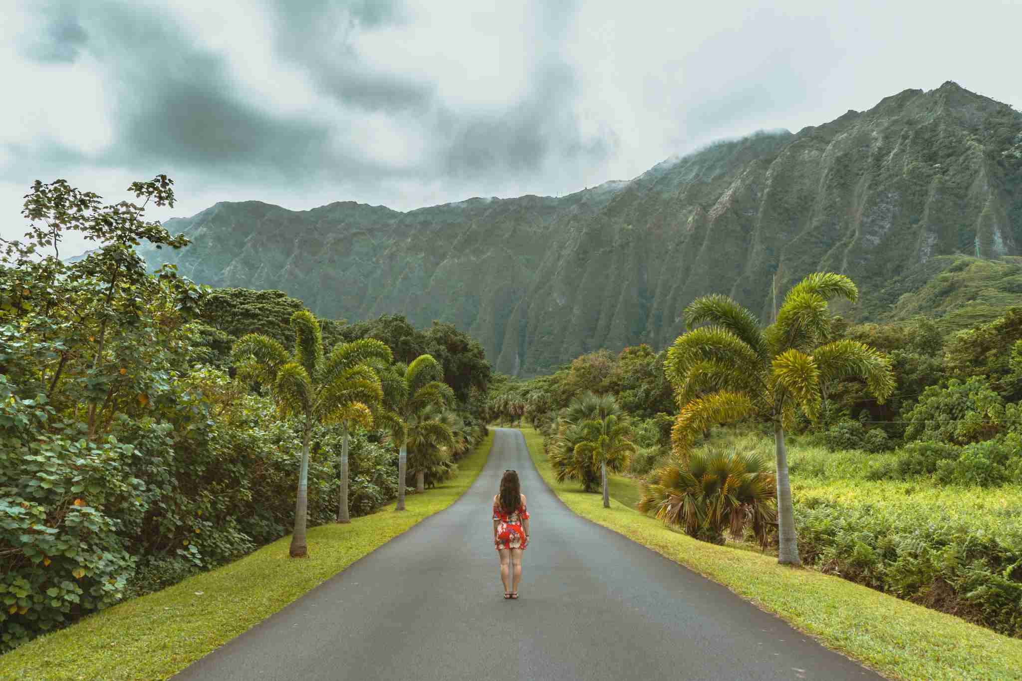 Budget travelers, rejoice! Southwest now offers an affordable option for those planning trips to Hawaii. (Photo by Wild Away / Unsplash)