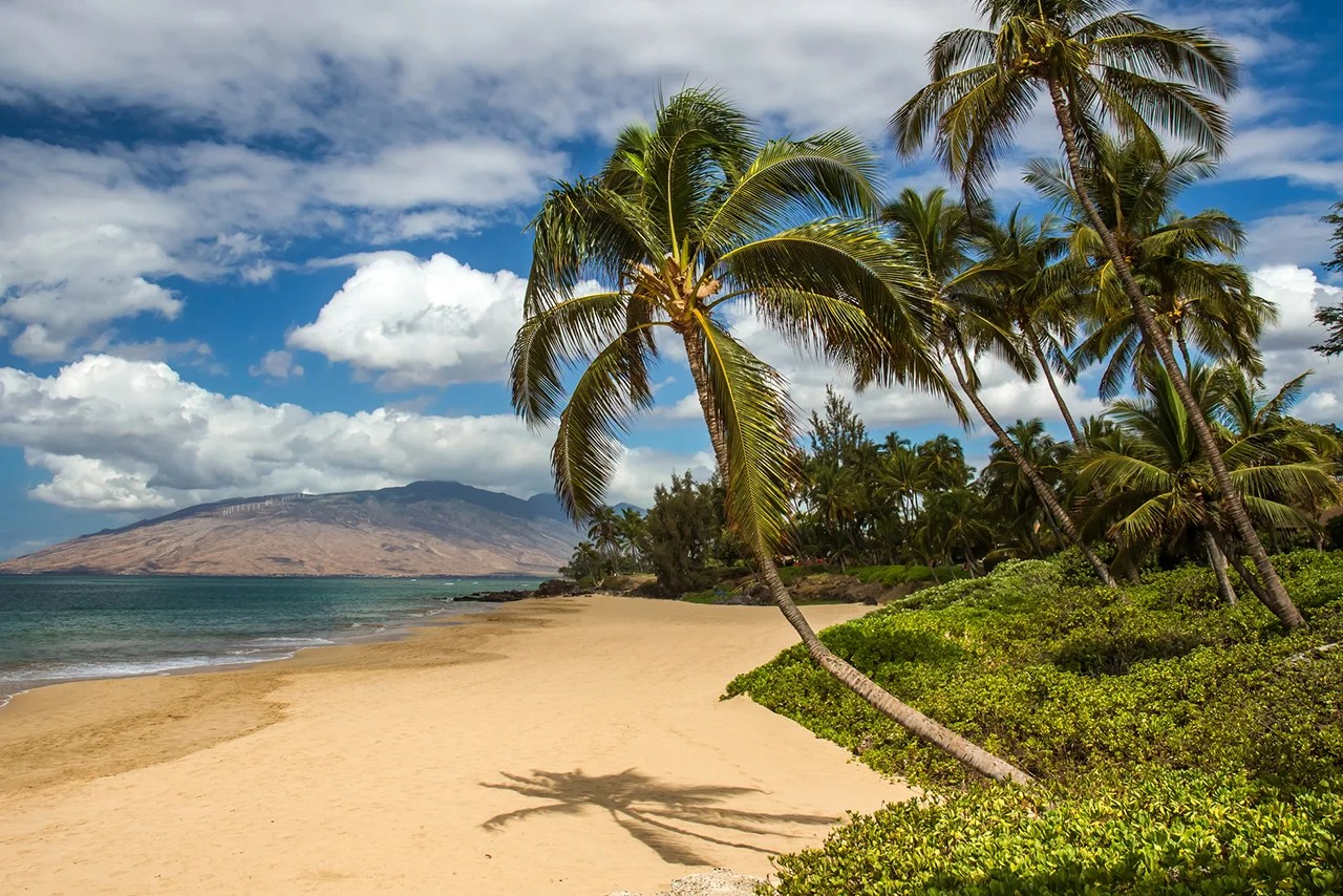 9 Things to Do in Maui That Aren't the Road to Hana