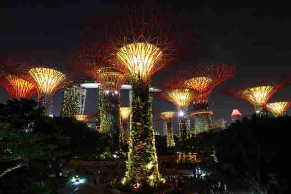 SINGAPORE - AUGUST 09: The Marina Bay Sands and the Supertrees at the Gardens By The Bay are illuminated at night on August 9, 2016 in Singapore. (Photo by Suhaimi Abdullah/Getty Images)