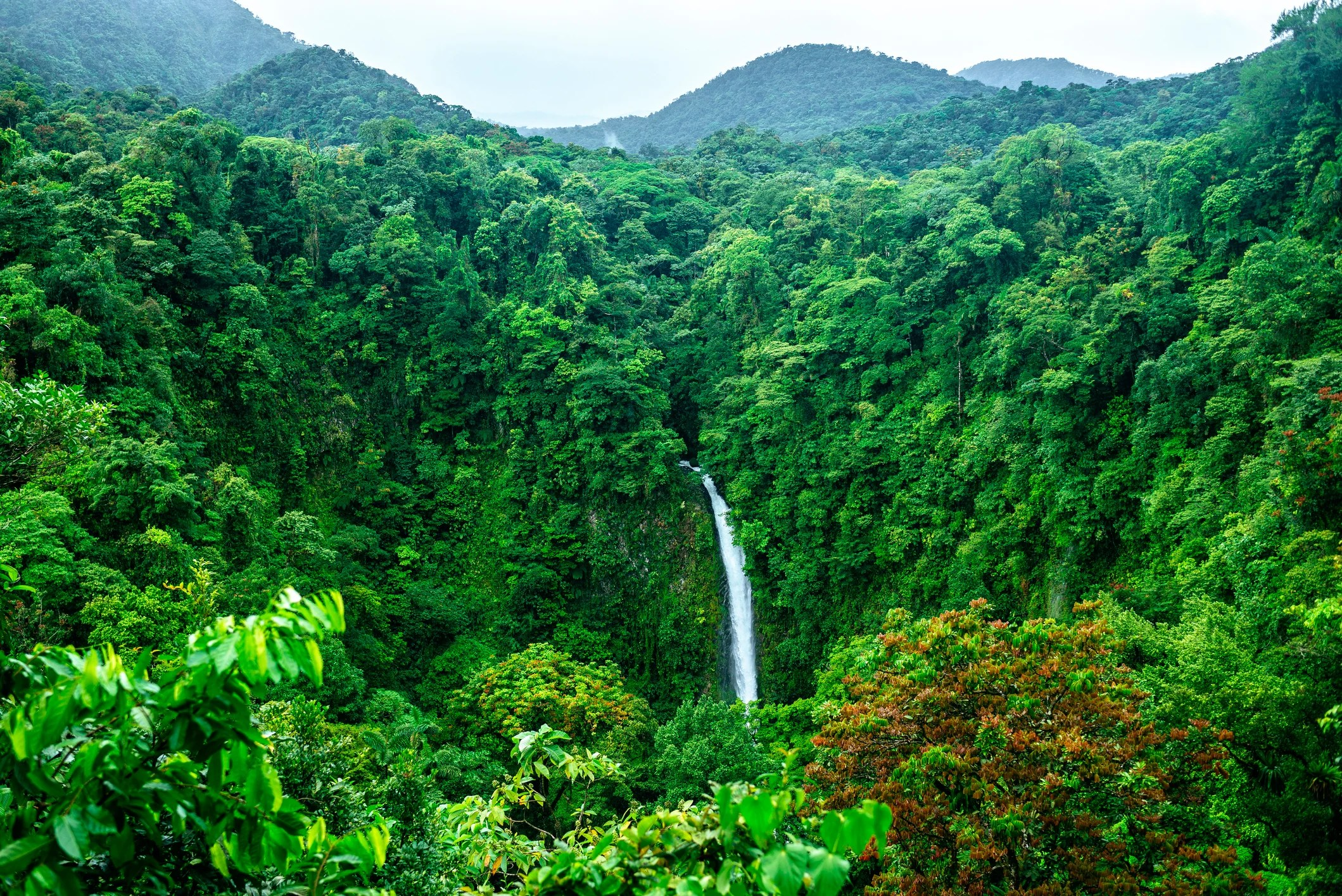 Deal Alert: Flights to Costa Rica From $214 Round-Trip