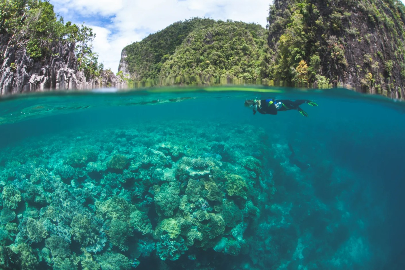 The reefs in Raja Ampat, Indonesia are lush and vastly protected. (Photo via Shutterstock)