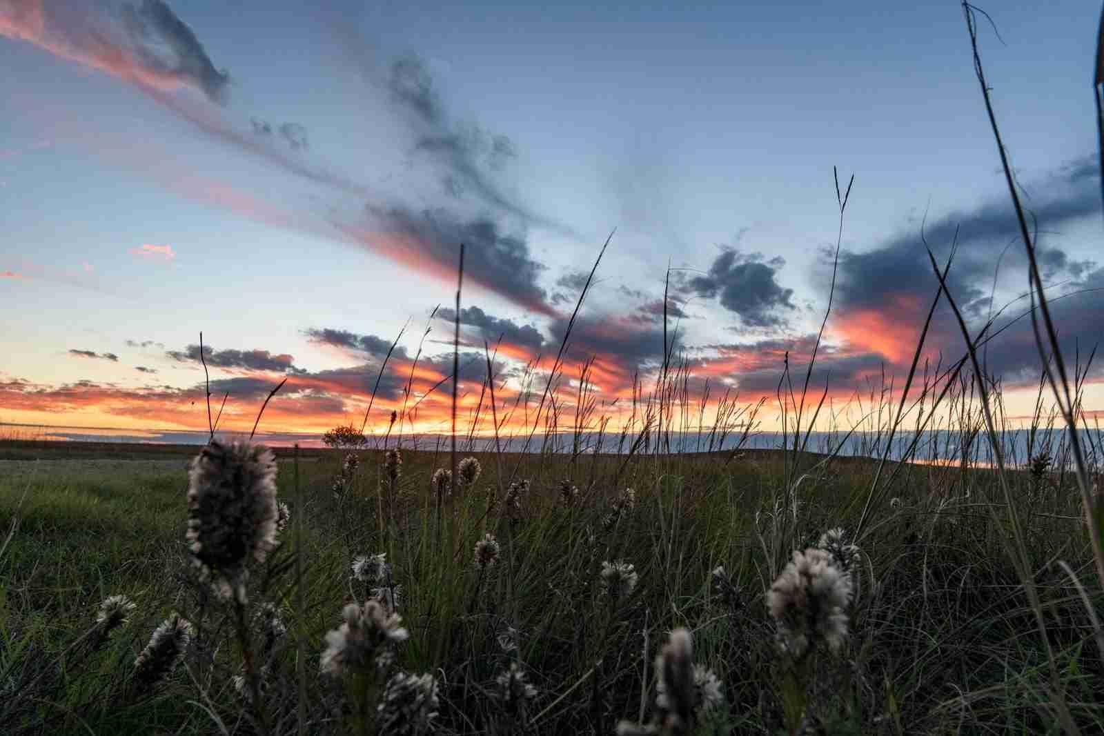 The Tallgrass Prairie National Preserve at sunset. (Photo via Shutterstock)