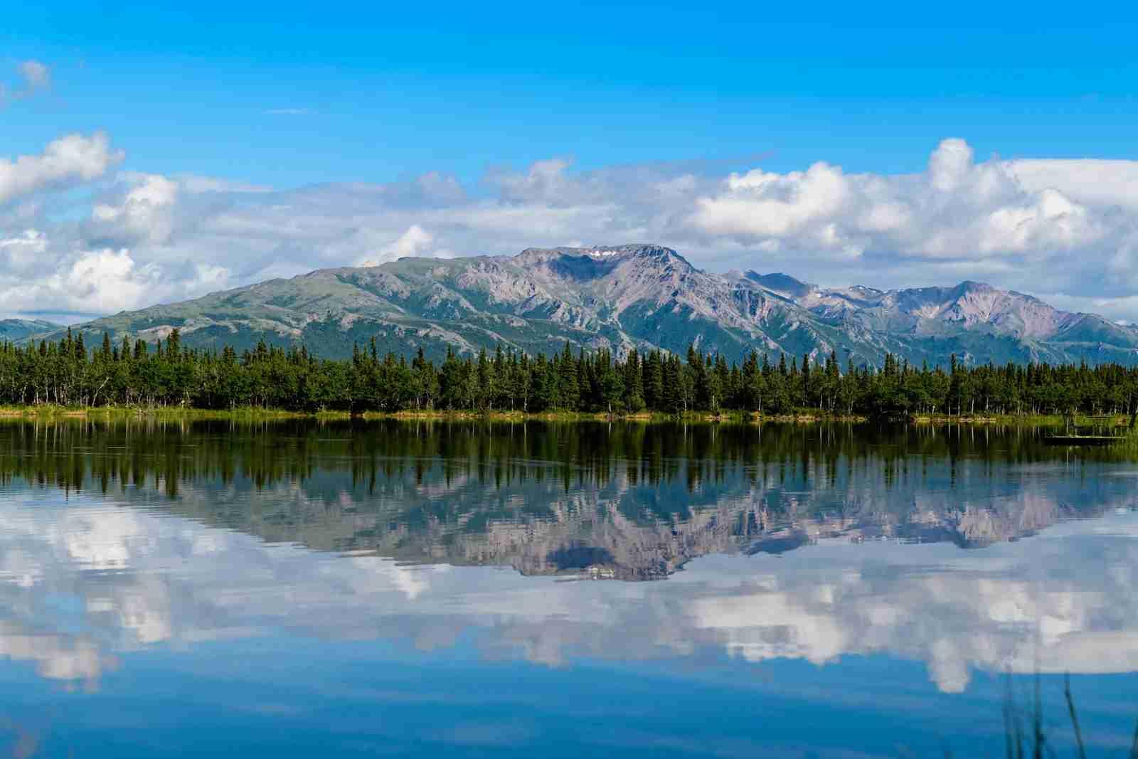 Denali National Park (Photo by Hari Nandakumar/Unsplash)