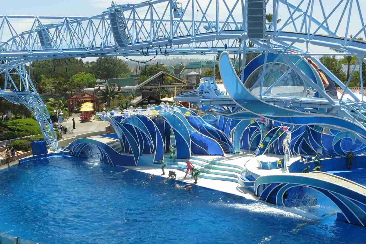 Sea World San Diego Dolphin Show