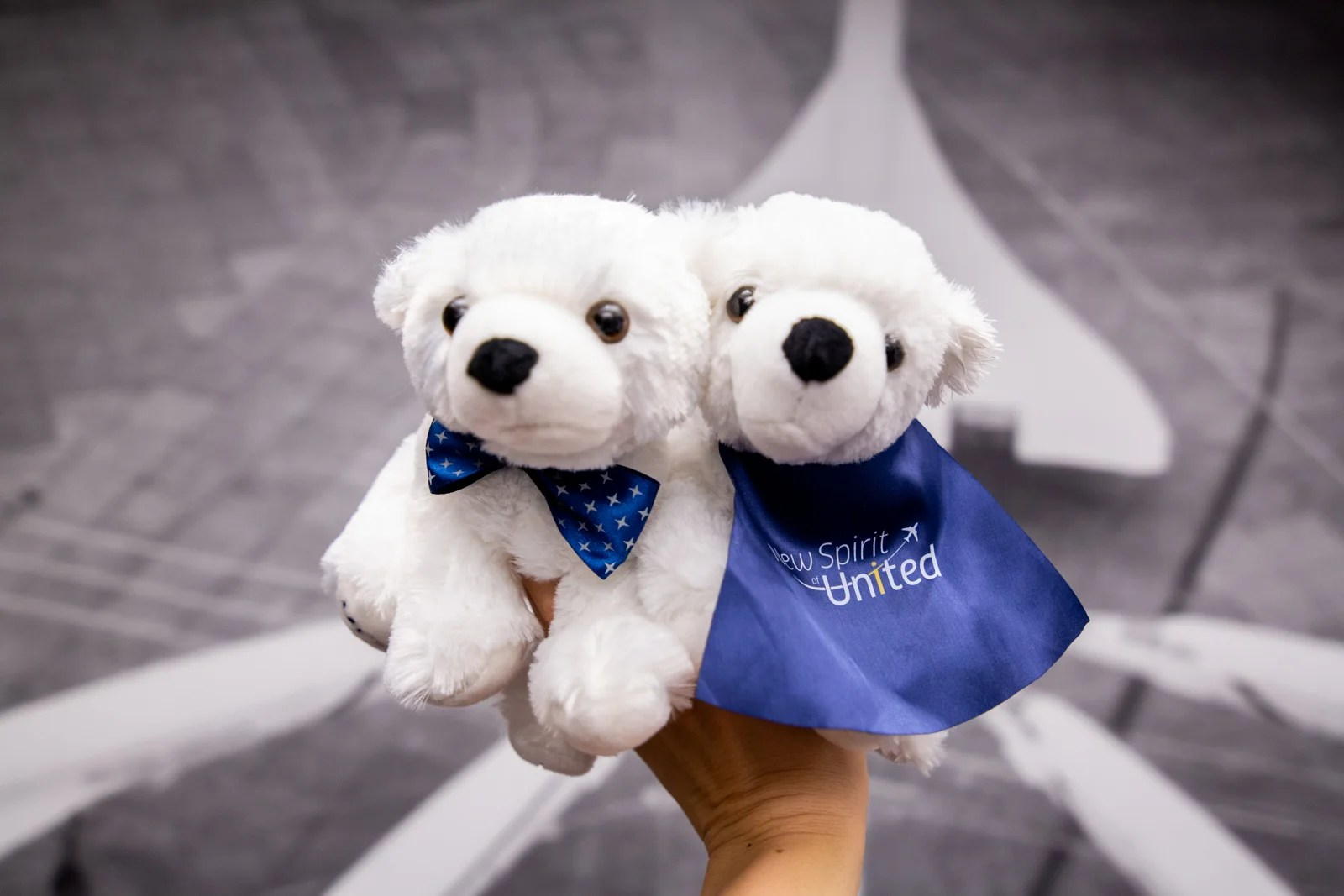 United Reconsidering Chase Partnership Amid Double-Digit Growth