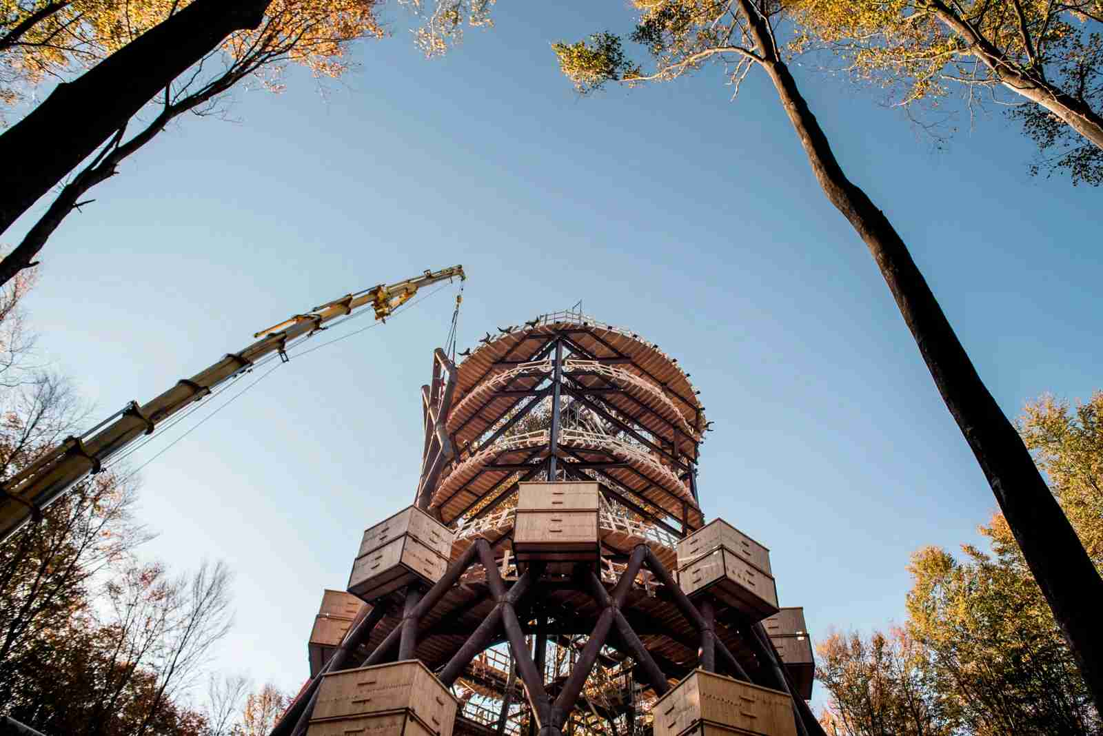 The 45-meter-high observation tower of the Camp Adventure, designed by EFFECT Architects, is pictured as it is under construction at Gisselfeld Kloster near Haslev on Zealand in Denmark, on October 15, 2018. (Photo by MADS CLAUS RASMUSSEN/AFP/Getty Images)