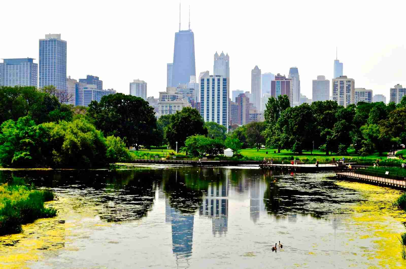 Reflection Of Downtown District In Lincoln Park Zoo Pond (Photo by Diarimar Rodriguez/EyeEm / Getty Images)