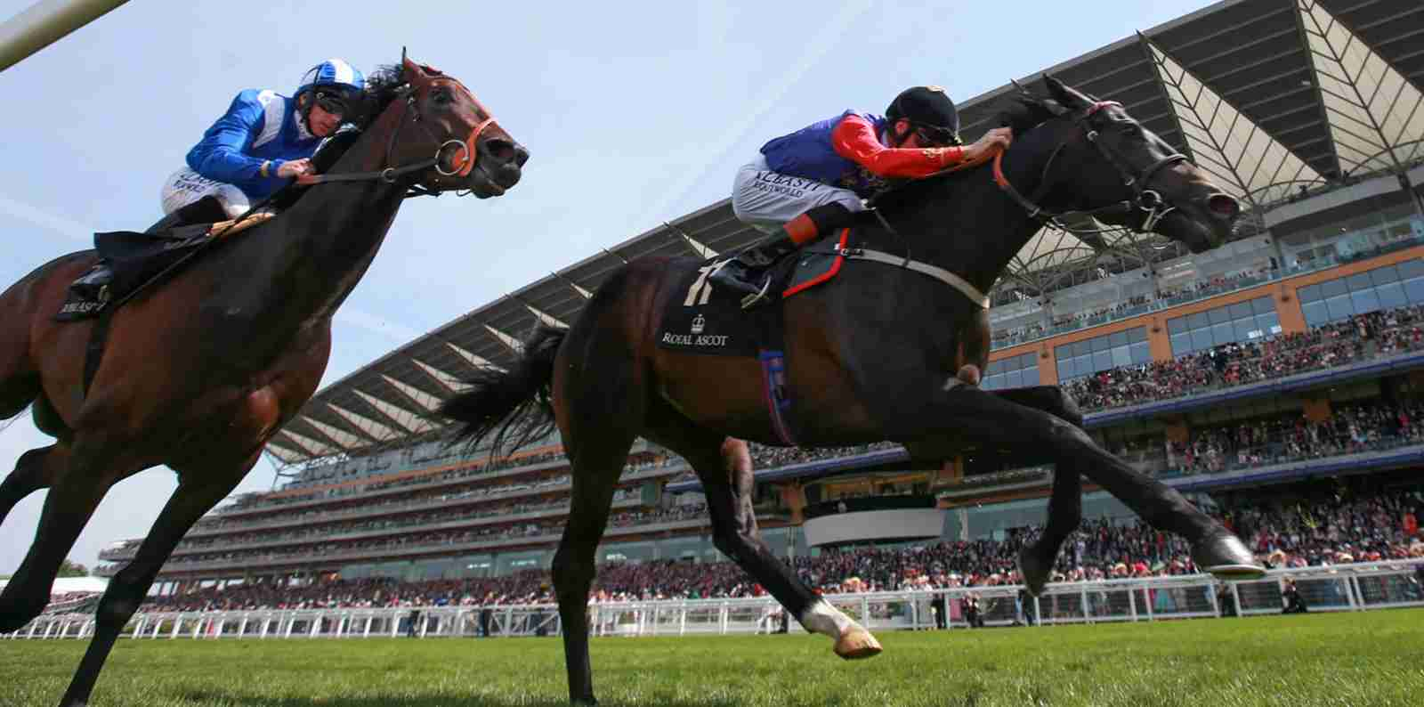 Royal Ascot racing. (Photo courtesty of The Royal Family)