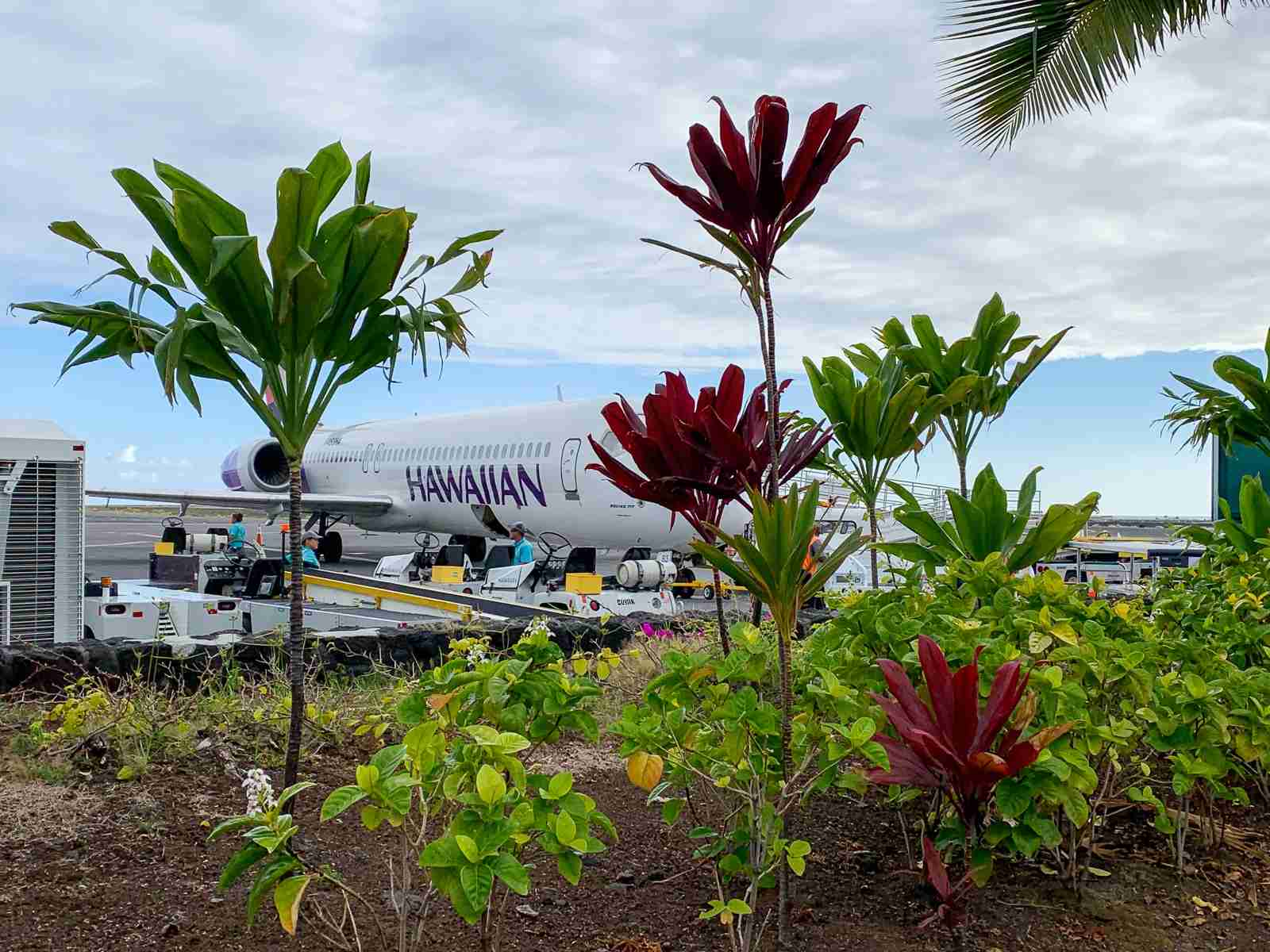 Hawaiian Airlines (Photo by Summer Hull/The Points Guy)