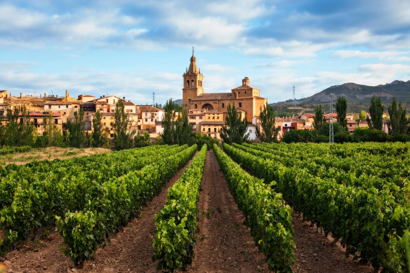 Vineyard and village of Briñas in the district of Haro