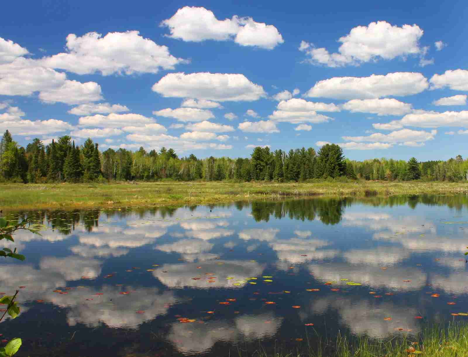 Rush Lake in Northern Vilas County, Wisconsin.