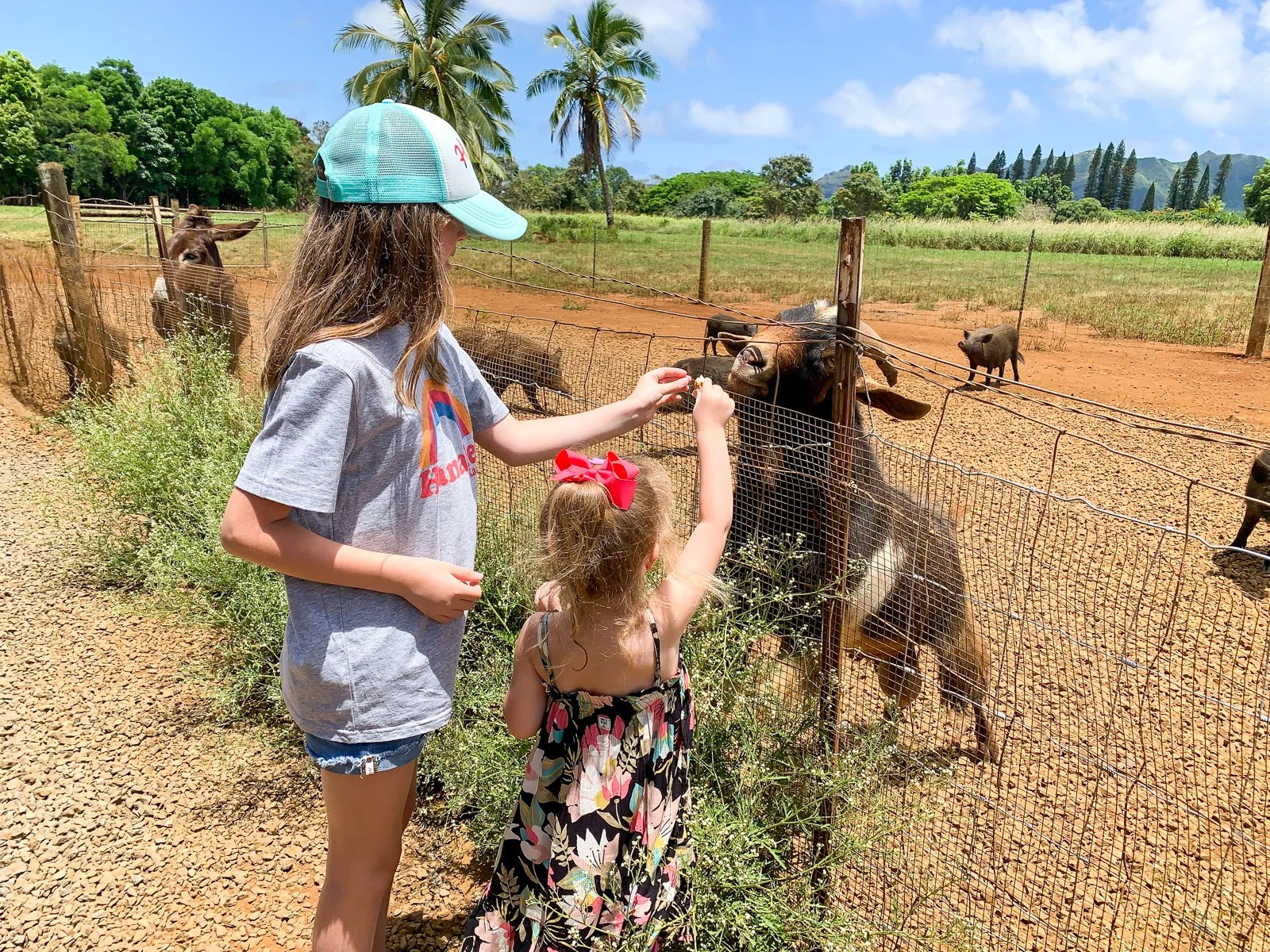 The Best Activities in Kauai to Try With Kids